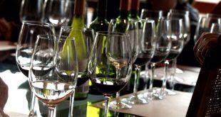 Tren Sabores Vino y Espumante Descubre el secreto del sabor