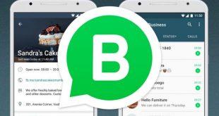 WhatsApp ya no será gratuito en su versión Business