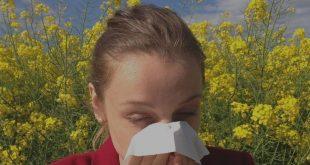 Llega la Primavera y con ella las alergias: Conoce el origen emocional de éstas y cómo tratarlas con terapias holísticas