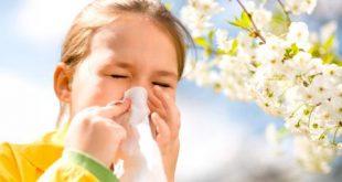 Remedios naturales para combatir la alergia en primavera